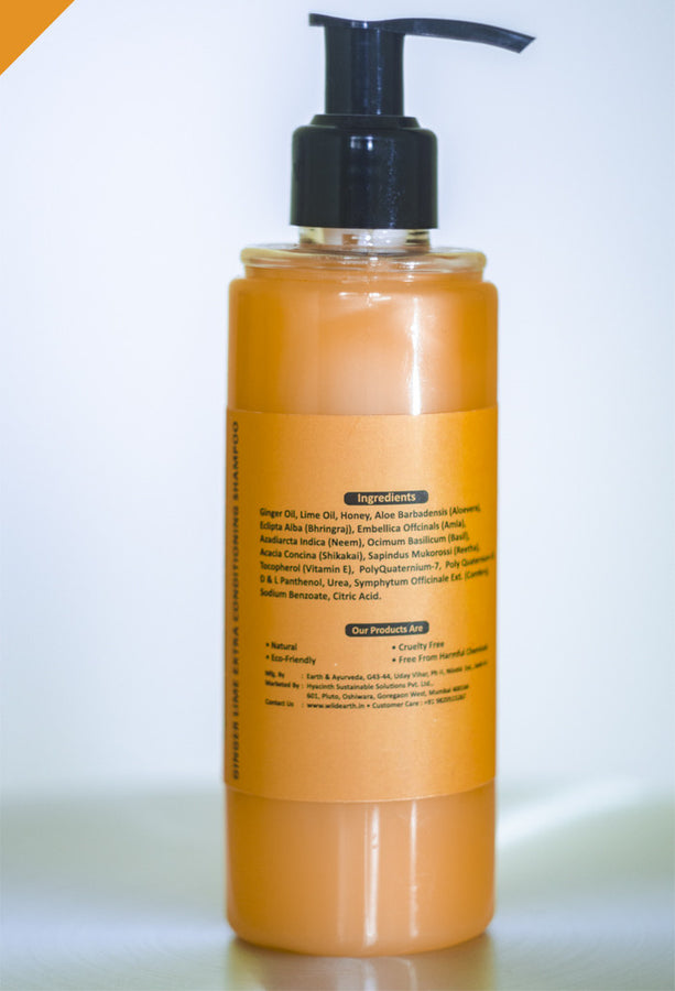 Wild Earth Ginger Lime Conditioning Shampoo 210ml