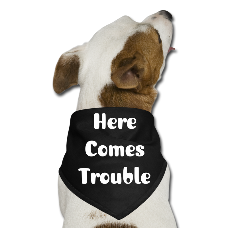 Here Comes Trouble Dog Bandana - black