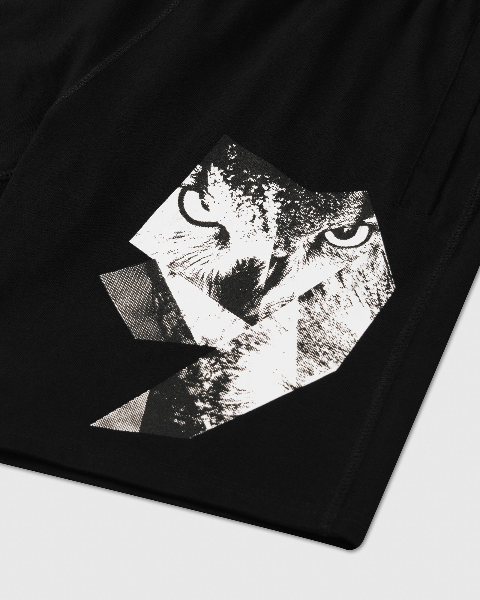 OWL GAZE SWEAT SHORT - BLACK IMAGE #2