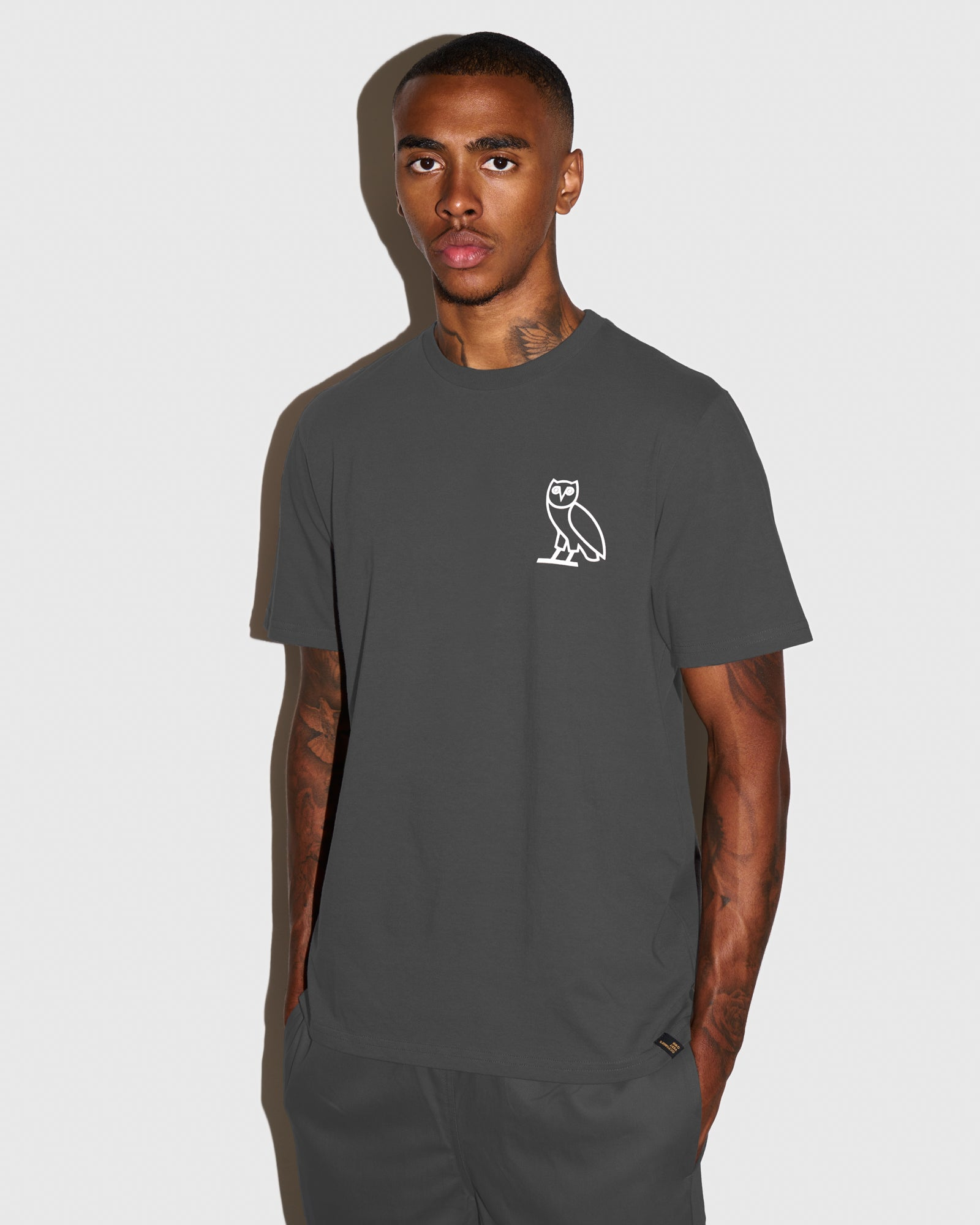 OVO SOME DAY T-SHIRT - GREY IMAGE #2