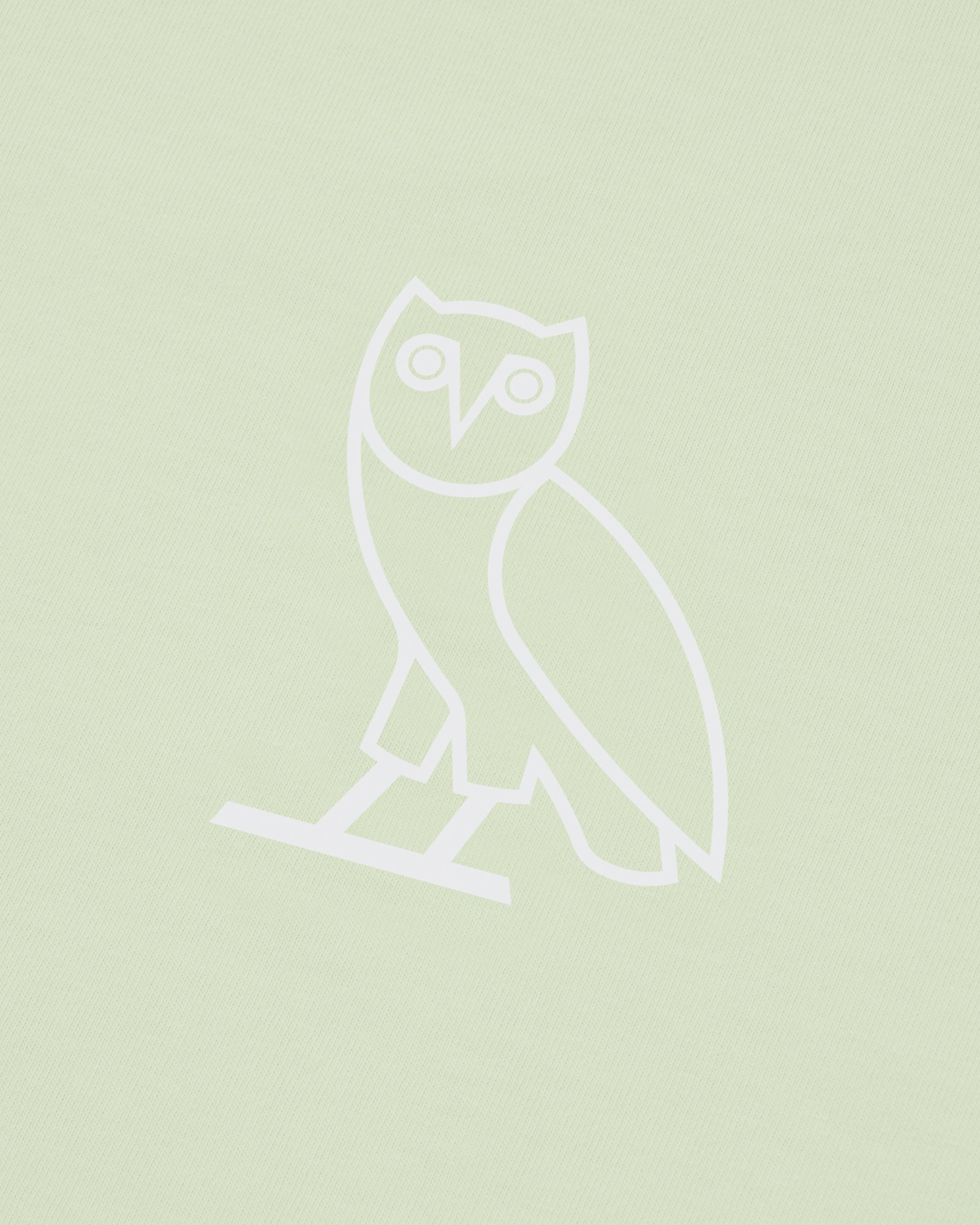 OVO SOME DAY T-SHIRT - MINT IMAGE #4