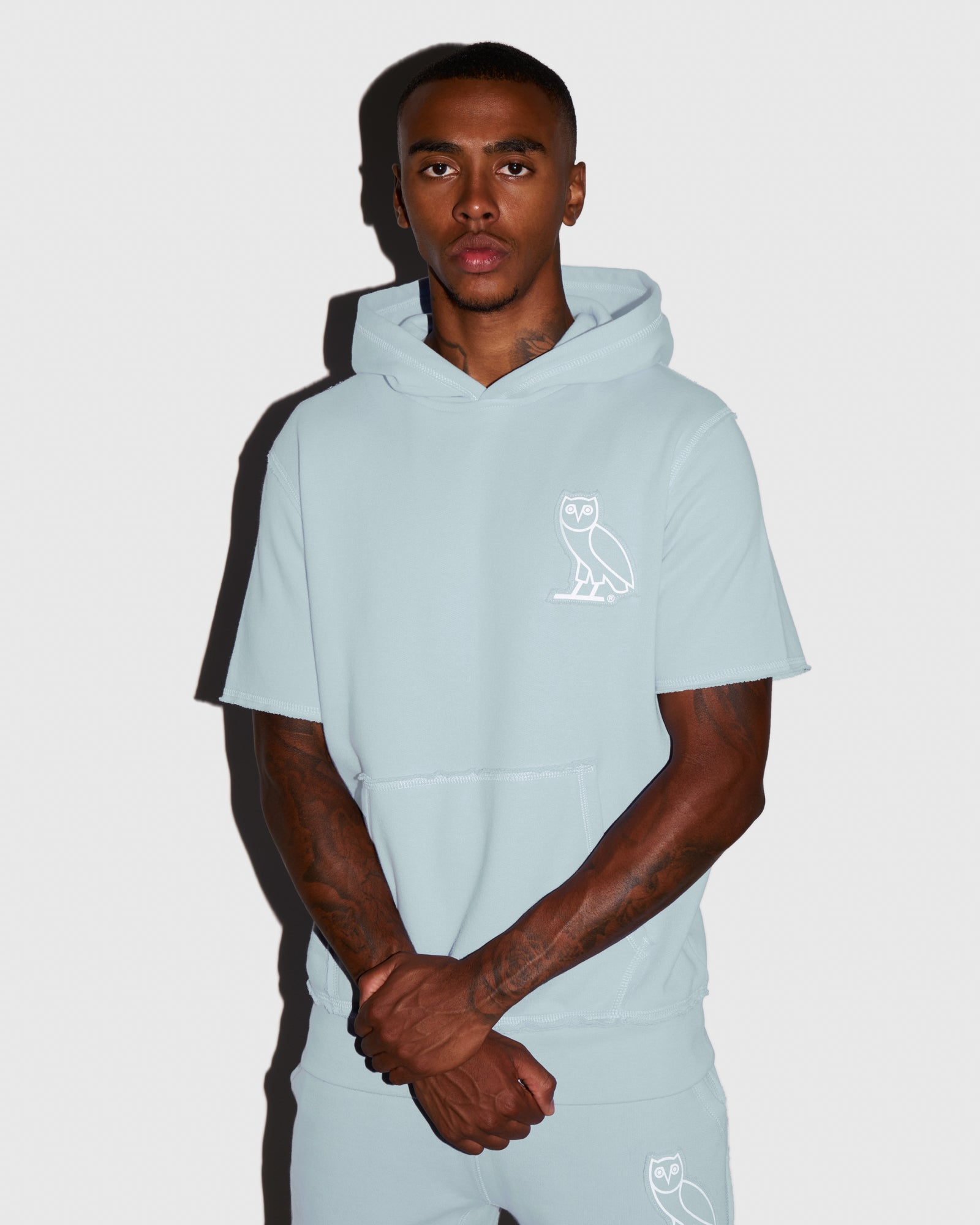 RAW EDGE FRENCH TERRY SHORT SLEEVE HOODIE - BABY BLUE IMAGE #2