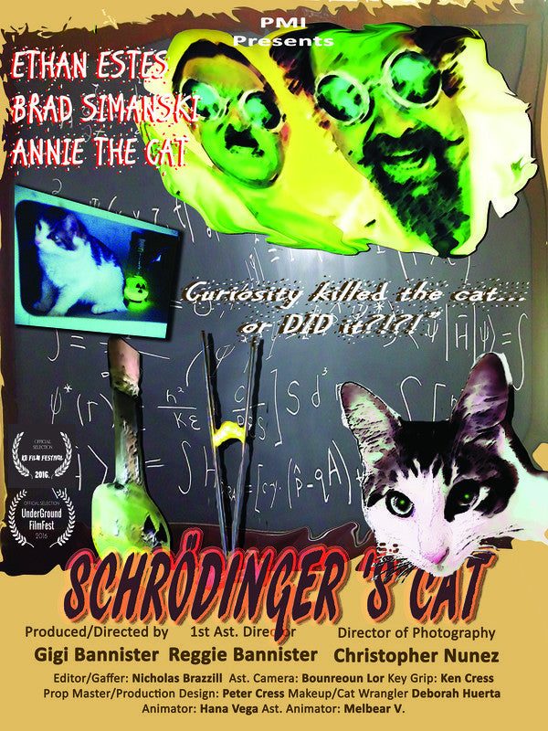 Schrodinger's Cat - Laminated Poster