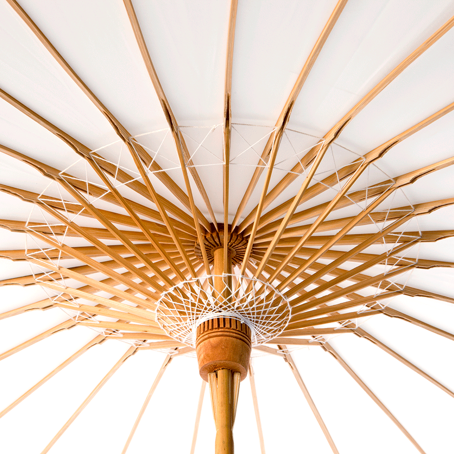 Interior view of Lily Lark bamboo constructed parasol.