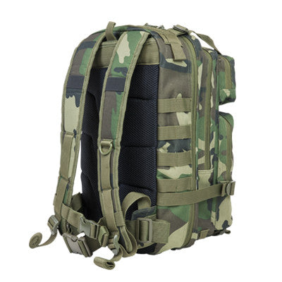 Small Backpack (Multiple Color Selection)
