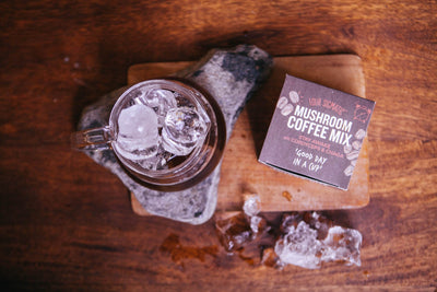 Four Sigmatic - what are 'shrooms anyway?