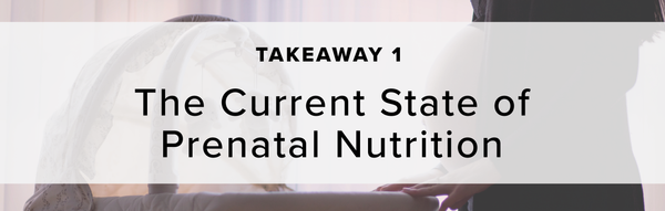 1) The Current State of Prenatal Nutrition
