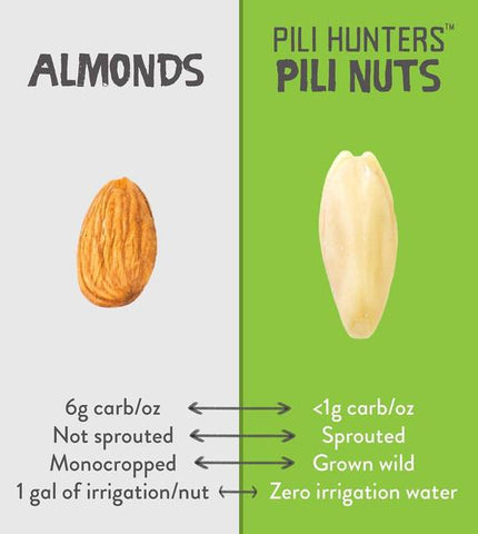 Pili Hunters Pili Nut vs. almonds on SwitchGrocery Canada