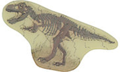 Lenticular T-Rex Shoe Charms