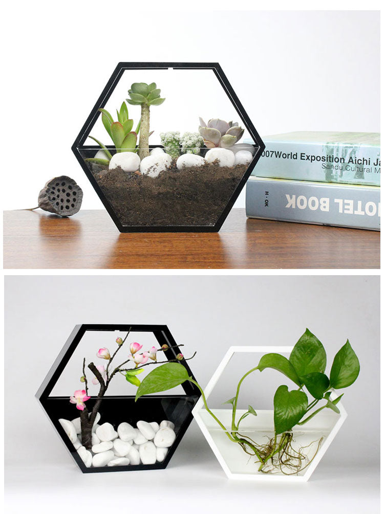 Polygon Wall Planting pots