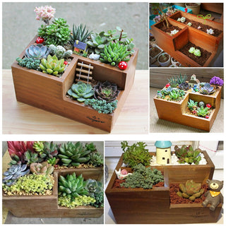 Multi-Function Decorative Flower Pot or Desktop Organizer