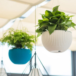 Woven Round Hanging Flower Pot