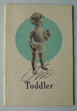The Toddler - A Book for Parents
