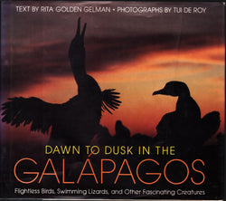 Dawn to Dusk in the Galapagos: Flightless Birds, Swimming Lizards, and Other Fascinating Creatures
