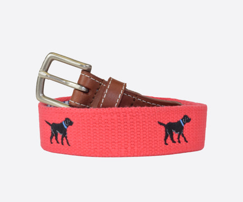 Youth Black Labrador Belt (geranium)