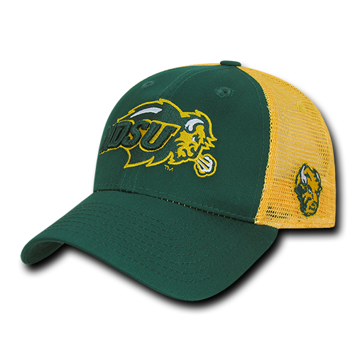 ION College North Dakota State University Instrucktion Hat