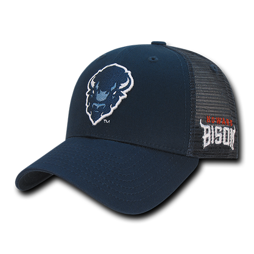 ION College Howard University Instrucktion Hat