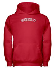 Family Famous Esperti Carch Youth Hoodie