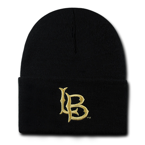 ION College California State University Long Beach Skullion Hat - by W Republic