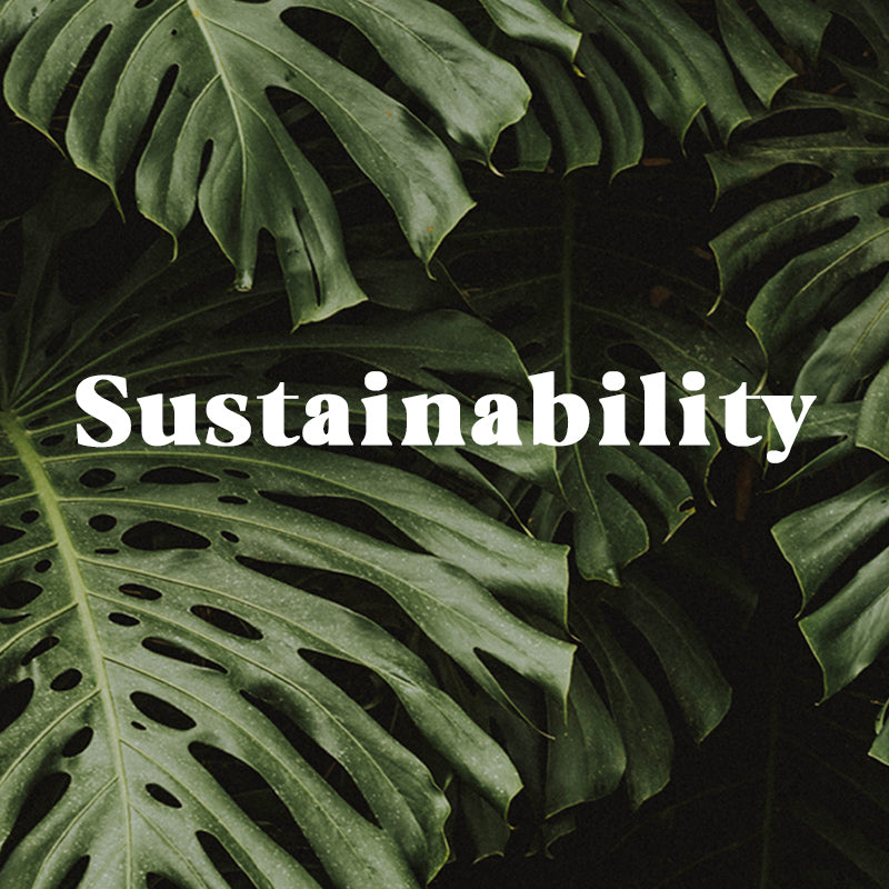 Our Conscious + Sustainable Efforts