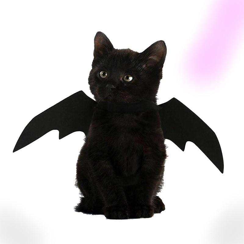 Cute Bat Wings
