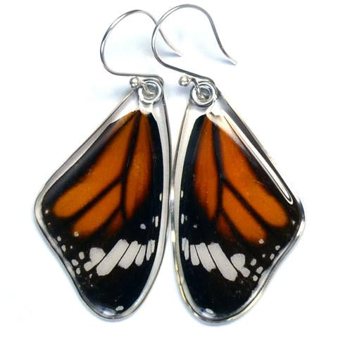 Striped Tiger Butterfly Earrings by Simona Dedek - © Blue Pomegranate Gallery