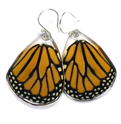 Monarch Bottom wing Butterfly Earrings by Simona Dedek - © Blue Pomegranate Gallery