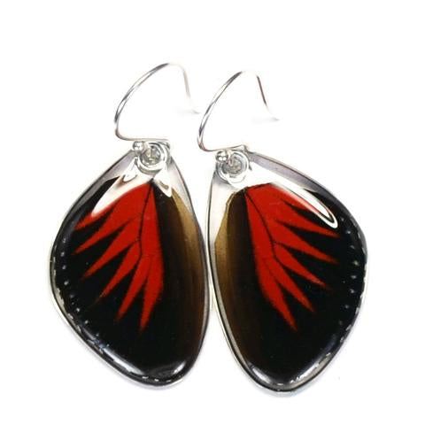Doris Longwing Butterfly Earrings by Simona Dedek - © Blue Pomegranate Gallery