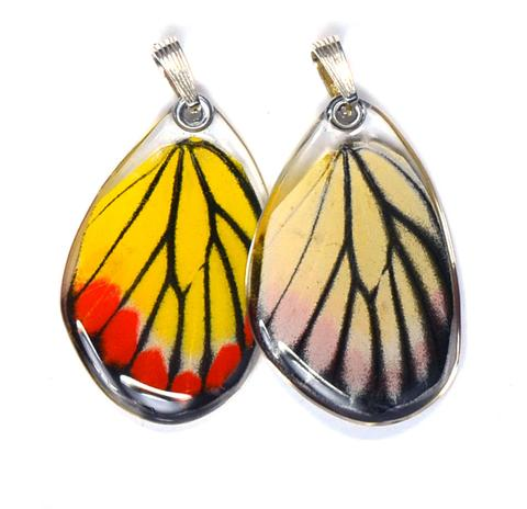 Painted Jezabel Butterfly Earrings by Simona Dedek - © Blue Pomegranate Gallery