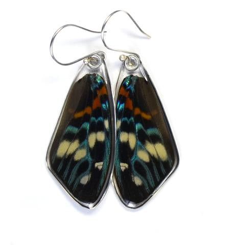 Day Flying Moth Butterfly Earrings top wing by Simona Dedek - © Blue Pomegranate Gallery