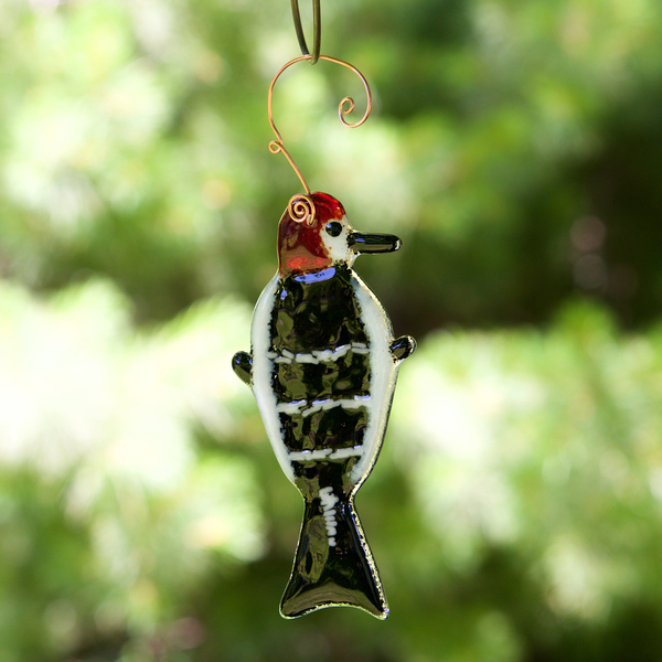 Woodpecker Sun Catcher by Riha