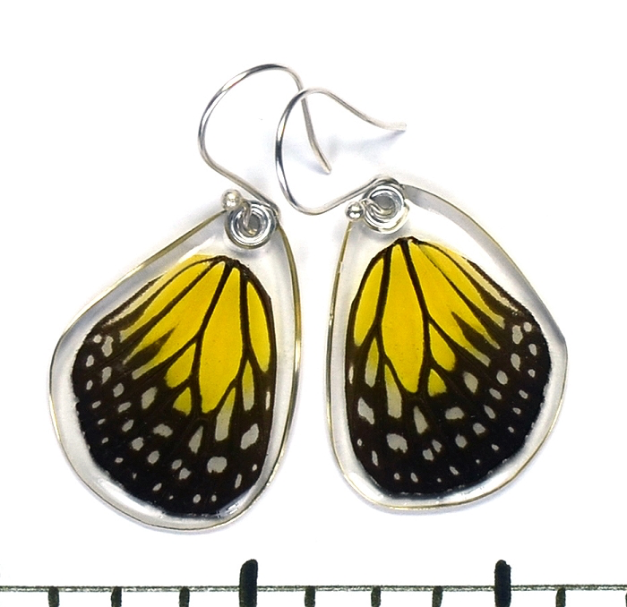 Yellow Glassy Tiger Butterfly Earrings by Simona Dedek - © Blue Pomegranate Gallery