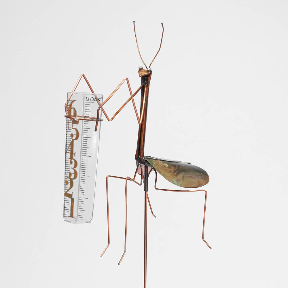 Praying Mantis Rain Guage by Catherine Murphy - © Blue Pomegranate Gallery