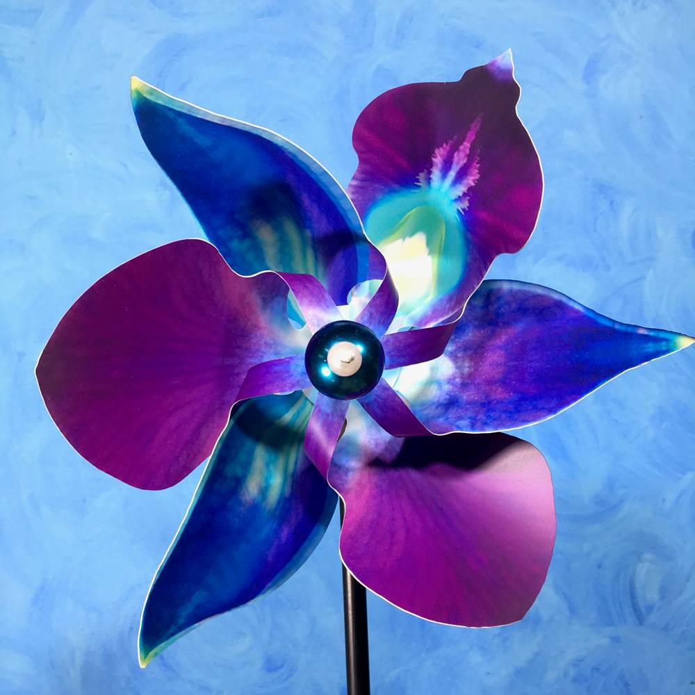 PA- Purple & Turquoise Cymbidium Orchid Pinwheel - © Blue Pomegranate Gallery