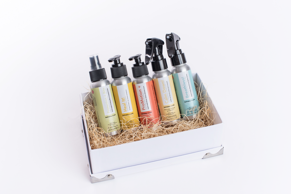 Full Set 80 ML Set (full 5 product line up in the limited edition NL4 box set)