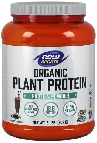 NOW Sports Plant Protein (Organic) - Natural Chocolate