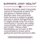 Nature's Way Turmeric Extract (Standardized)