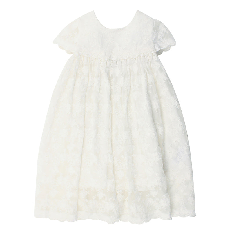 Bebe Short Sleeve Lace Dress - Ivory Special Occassion Bebe - Little Styles