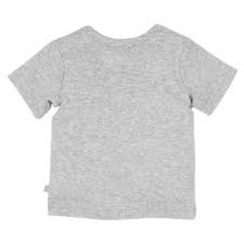 Bebe Teoscar Short Sleeve Envelope Neck Grey Tops Bebe - Little Styles