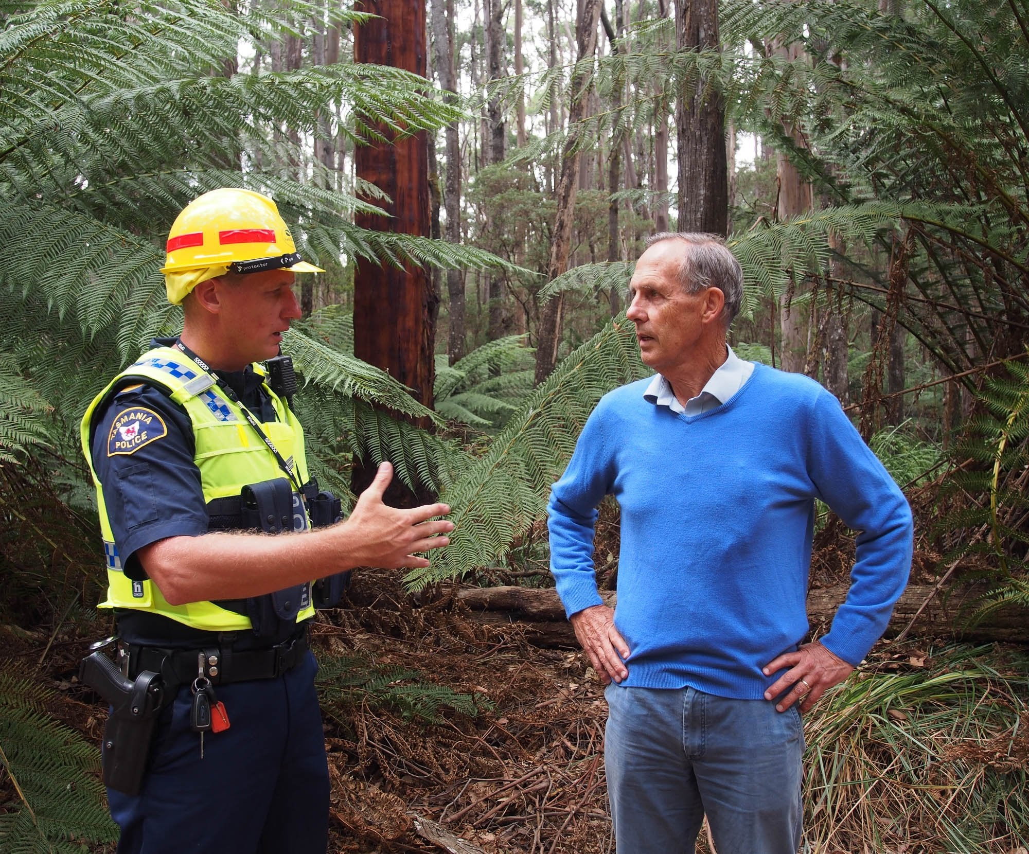 Bob Brown, Tarkine