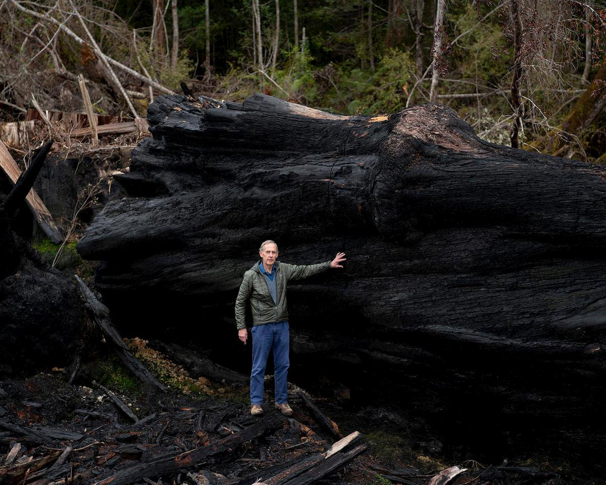 Bob Brown stands with a felled giant, truck twice his height, left behind after logging.