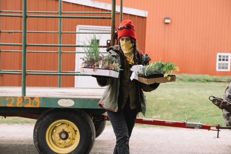 Rodale intern Delilah Miske follows protocol to keep customers safe during a drive-thru plant sale. All photos: Johnie Gall.