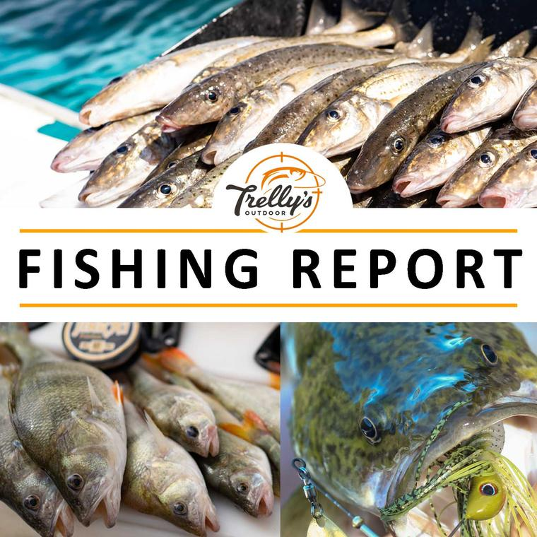 Fishing Report - Victoria
