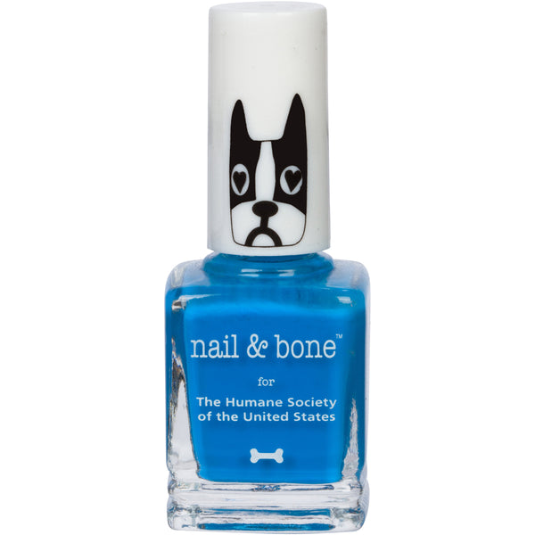 plash | Nail Polish | Blue |  8 Free | Vegan | HSUS | Humane Society | Fashion | Blogger | Influencer