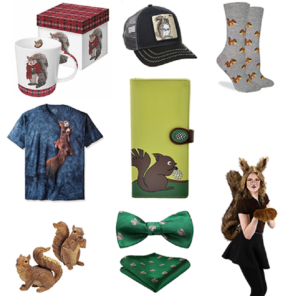 40 Cute Squirrel Gifts for Squirrel Lovers