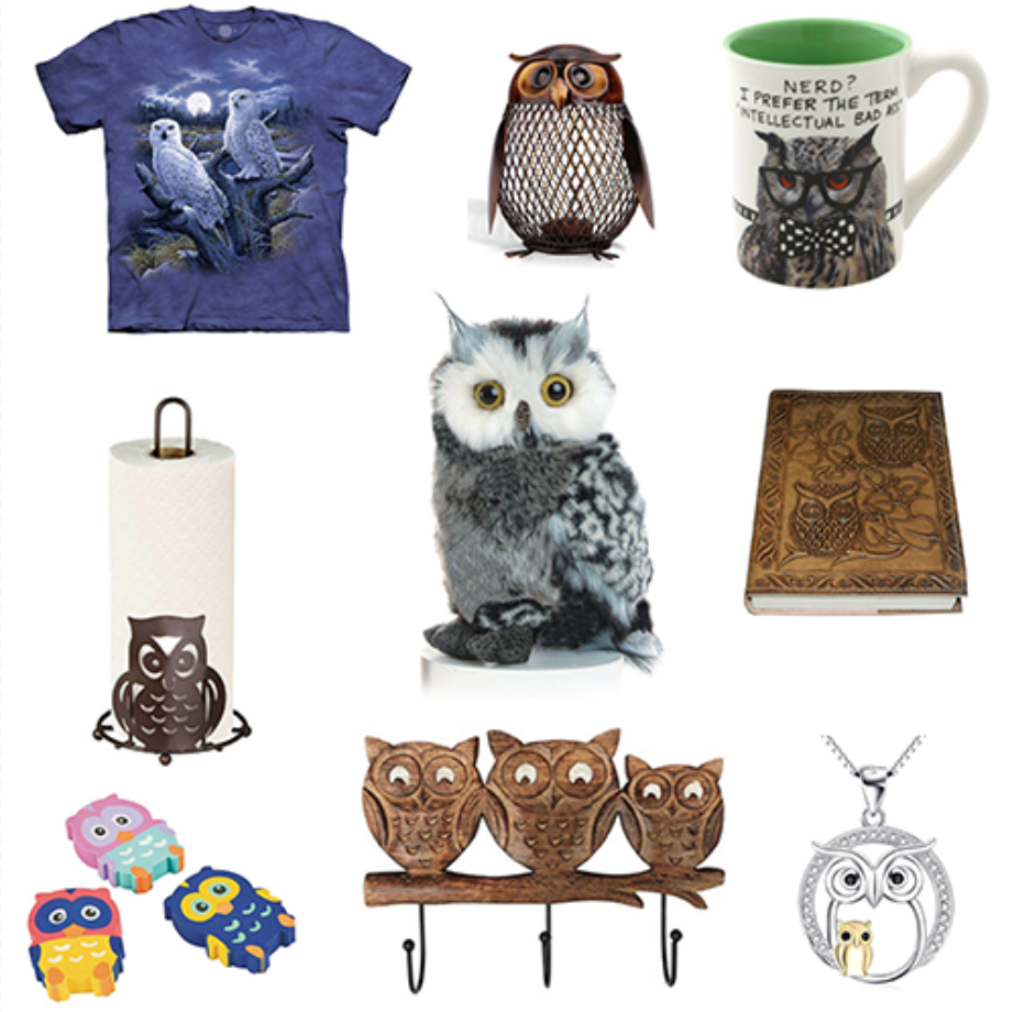 48 Owl Gifts for People that Love Owl Stuff