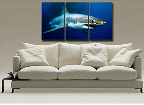 Big Shark Prints