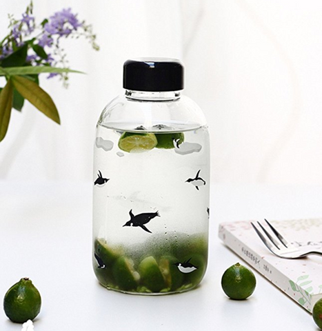 Glass Water Bottle with Penguin Print