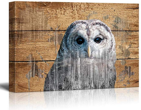 Rustic Canvas Owl Wall Art