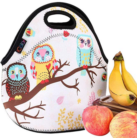 Owl Insulated Waterproof Cooler Lunch Bag